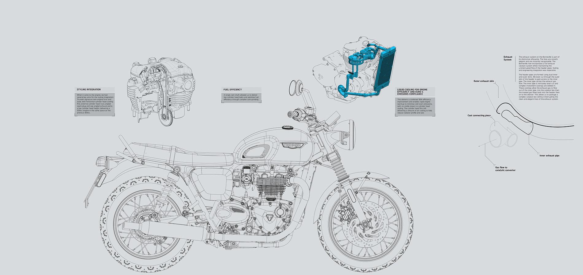 Triumph Design Graphic